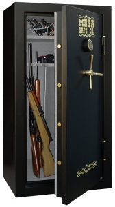 can you see the gun capacity of the Mesa Safe Company MBF6032E pictured here?