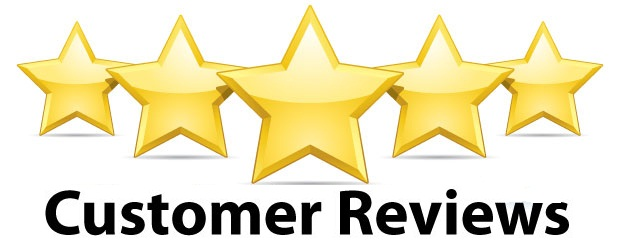 sample online customer reviews for gun safes